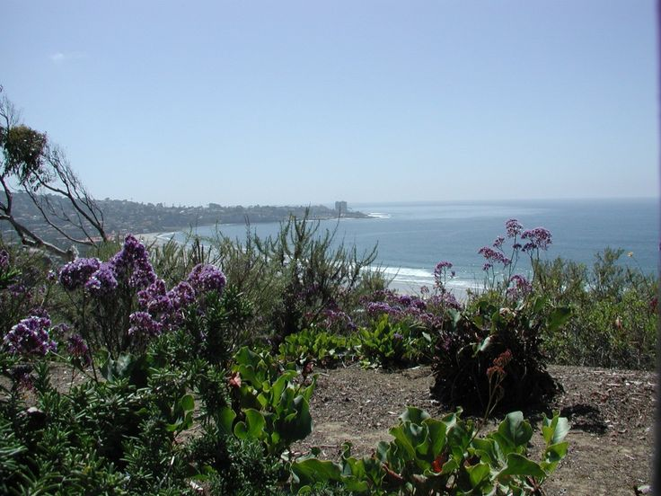 Budget Friendly Tips for Visiting San Diego