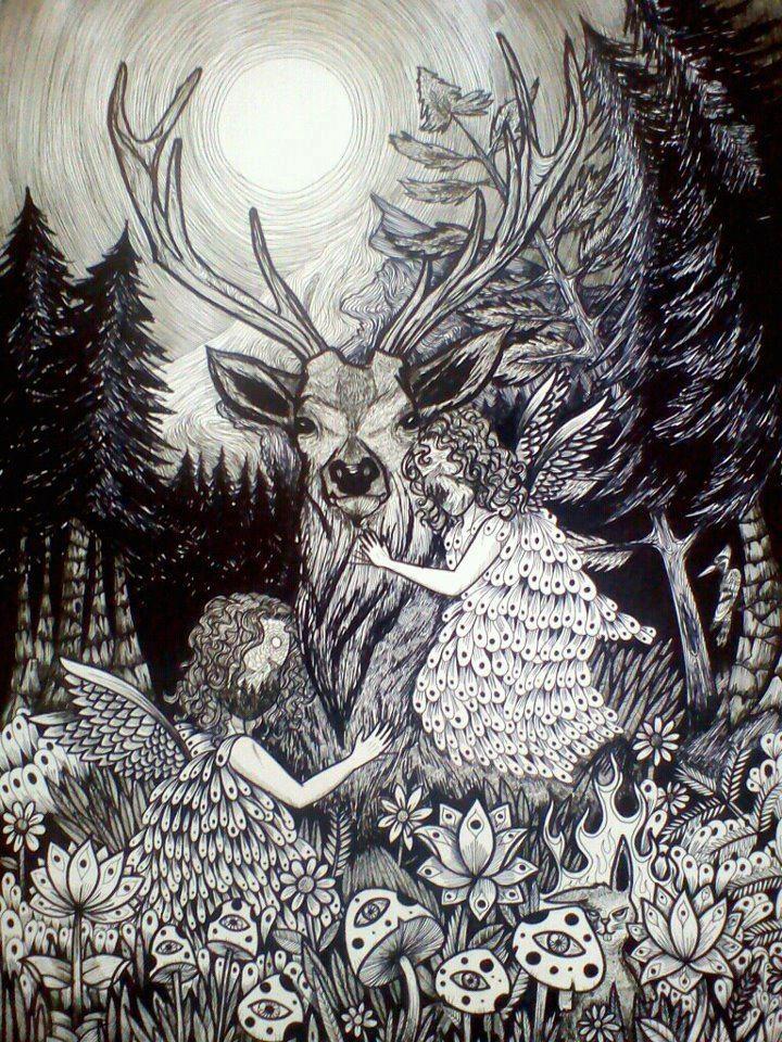 Tesoros de un bosque