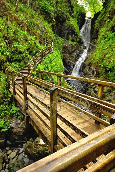 Glenariff Forest Park ~ Co Antrim, Ireland