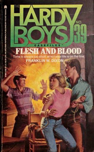 DANGER ZONE HARDY BOYS CASEFILES #37 (Hardy Boys C