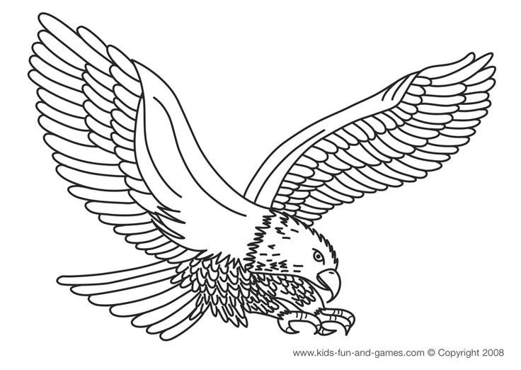patriotic eagle coloring pages - Coloring Page Eagle