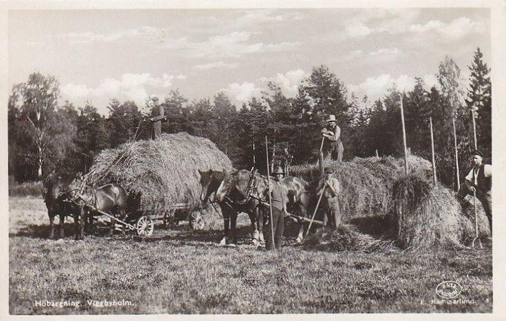 Täby - Viggbyholm, Höbärgning 1943.jpg