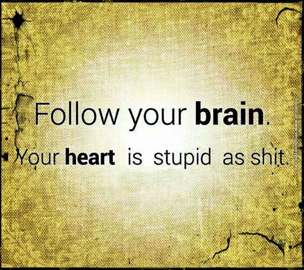 Here's why you shouldn't follow your heart | Very Funny Pics