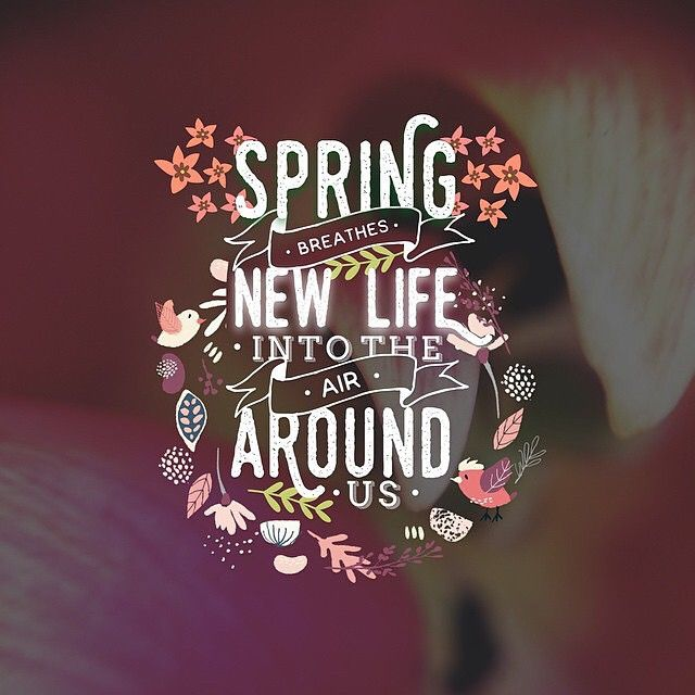 The seasons, mother earth, the stars and moon all affect and influence our moods .. Spring is new beginnings, clearing out the old and into the new  #mantra #SpiritualMe #SpiritualMeGoals