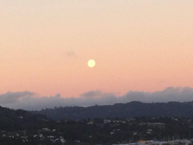 The moon came out early