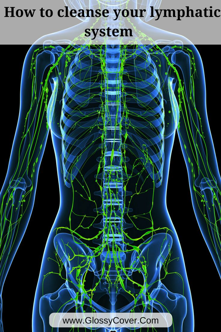 176 Best Lymphatic System Images On Pinterest Lymphatic