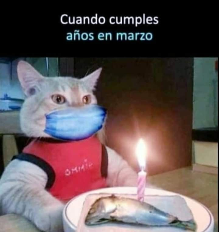 Pin By Rafael Gandara On Humor Funny Spanish Memes Funny Memes Memes