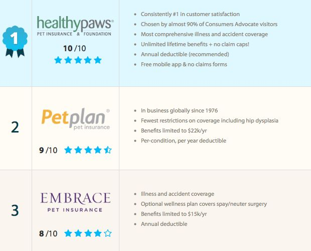Critical To Protect Your Pet And Wallet Pet Insurance Pet Insurance Pet Insurance Quotes Pet Insurance Cost