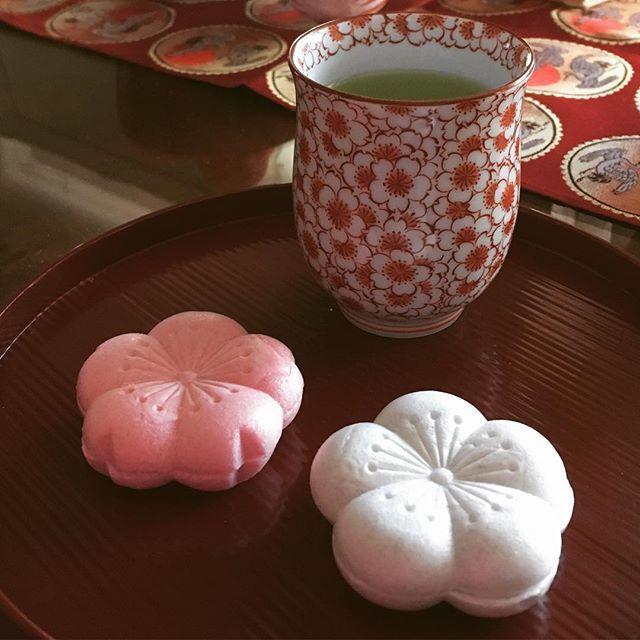 【bishokudou】さんのInstagramをピンしています。 《【御代の春】つぶあんも最中もあんまり好きじゃない和菓子好き。好みがムツカシイ私だけど、これはお正月には欠かせない味。小ぶりなのもいい。 #虎屋 #御代の春 #最中 #もなか #こしあん  #桜 #梅 #大福茶 #お正月 #和菓子 #名品》