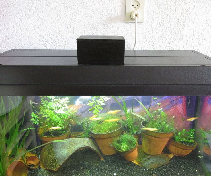 """""""What a boring black box""""Yes it is, but:– It feeds my fish when I'm not there.– It feeds at a predefined time.– It senses the food given to the fish– You can login remotely into the raspberry pi to see the status.– It can send an e-mail when something is wrong."""