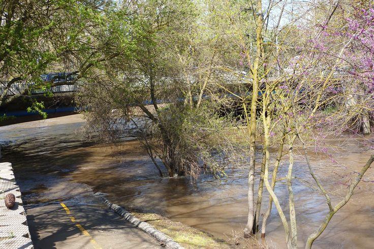 Bear Creek, Merced, California, April 2011