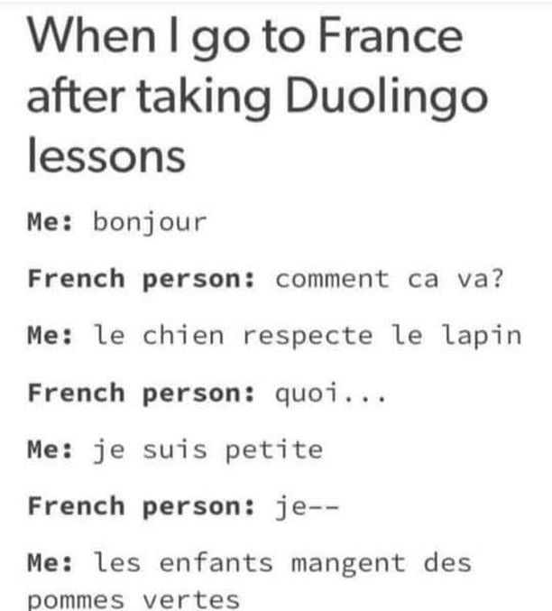 Alexa Polidoro On Instagram Ah Ah I Wouldn T Judge Duolingo But I Found That Pic Funny And Quite Realistic Of The Differ Funny French Duolingo Learn French