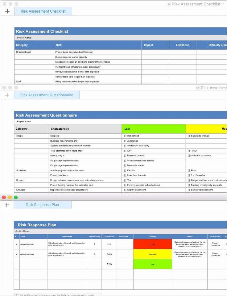 Risk Management Plan Template Inspirational Risk