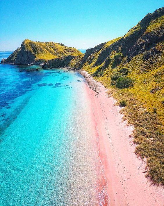 Pink beach , Komodo National Park, Flores Island ...