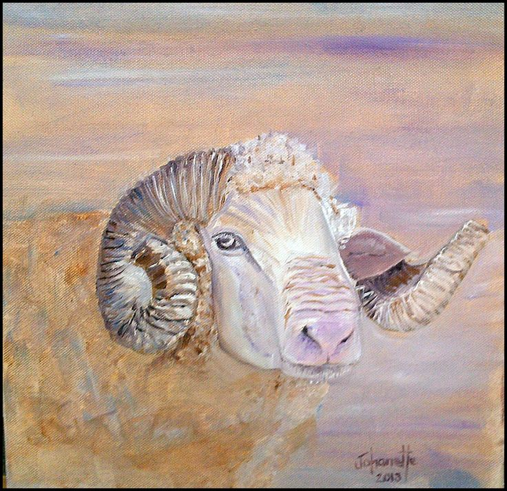 12	Sheep 	Oil Painting 	Stretched Canvas 300x300x40mm