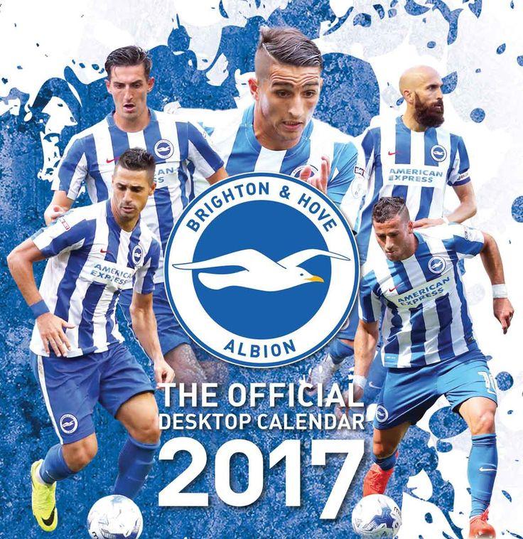 Brighton & Hove Albion FC Easel 2017