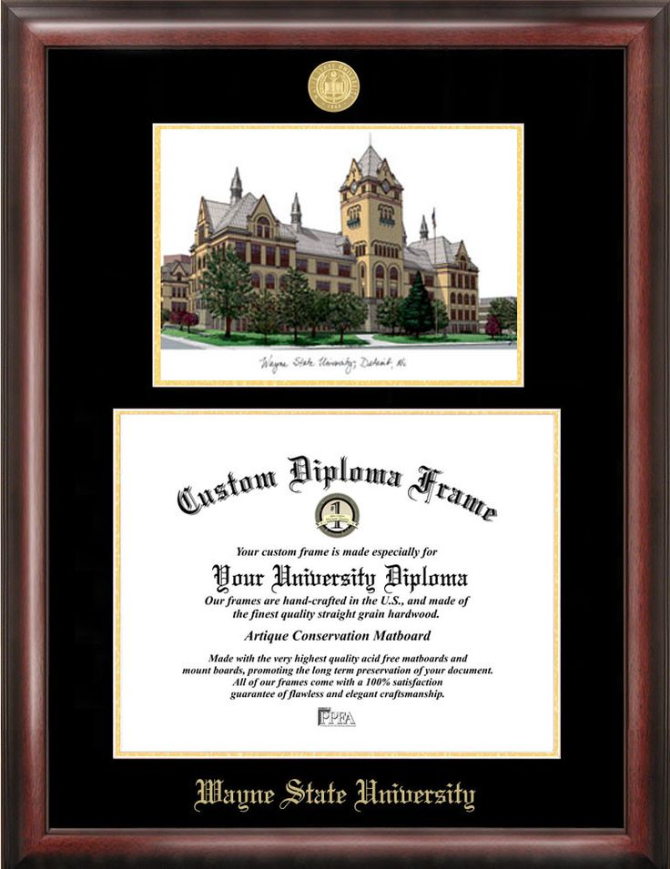 NCAA Wayne State University Diploma Lithograph Picture Frame
