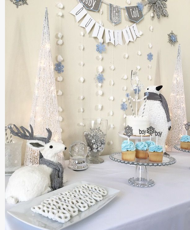 Winter Onderland, Winter Party Ideas, Winter Baby Shower, Boy Baby Shower,  White