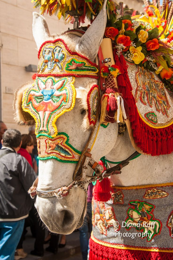 Wonderfully decorated horses and Sicilian carts at the Ricotta Festival in Vizzini, Sicily.