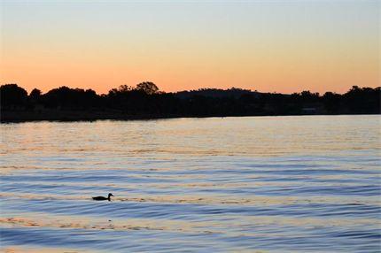 #LakeAlbert #WaggaWagga from Rhianna C. #JWsnapshot