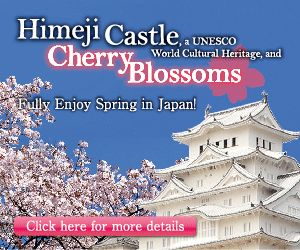Best cherry blossom spots in Kyoto (Kyoto Hanami Spots)