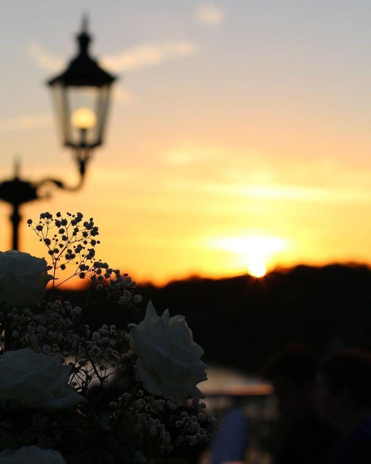 S U N D O W N E R Don't let the sun go down on me... wie Elton John sagen würde.. . . . #berlin #sunset #sundowner #thatsdarling #thehappynow #pursuepretty #wandeleurspark #makeyousmilestyle #abmlifeissweet #abmlifeiscolorful #abmhappyhour #abmsummer #abmathome #flashesofdelight #petitejoys #livethelittlethings #dscolor #livecolorfully #liveauthentic #foundforaged #theblogissue #nothingisordinary #finditliveit #howisummer #howyouglow #prettylittlething #colorventures #thatcolorproject…