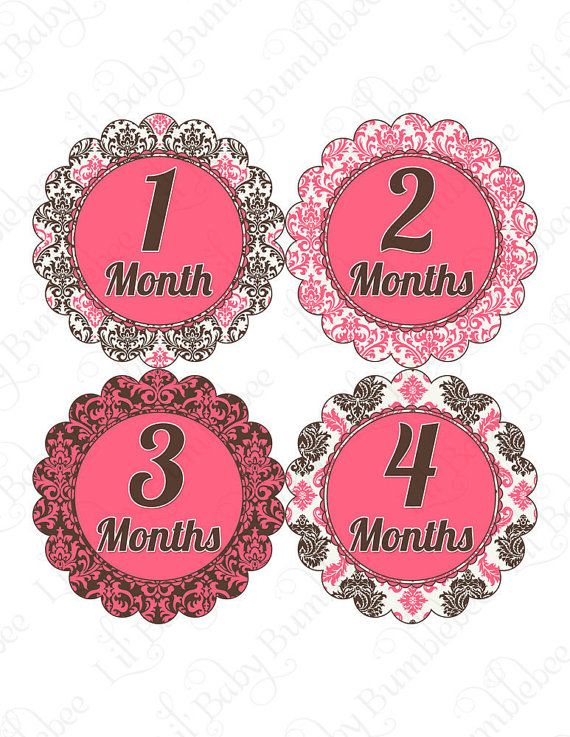 Monthly Onesie Baby Stickers  Aria  Posh by LittleBabyBumblebee, $9.00