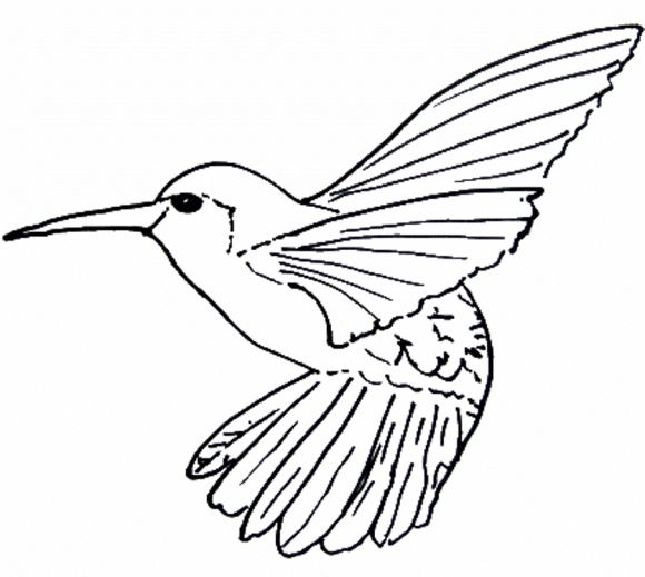Line Drawing Bird : Best line drawings images on pinterest appliques