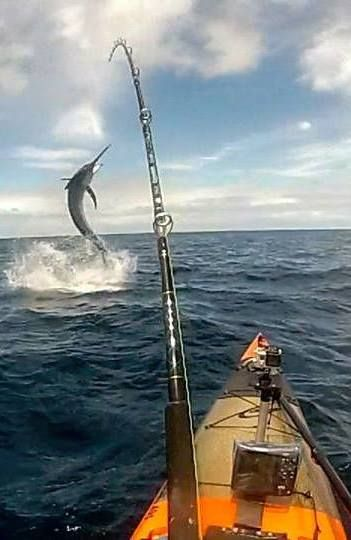 Bull Redfish Photo Caught In Gulf Of Mexico Kayak Fishing Pinterest Photos Fishing And Mexico