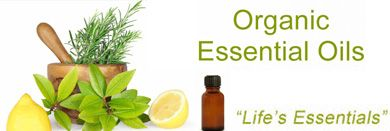 Aromatherapy essential oils contain pure essence of plants from which they are extracted. If you want to know how these products work on human body, you have to understand their extraction process. They are extracted in several ways and from different parts of the plants.Read more http://goo.gl/tnPE7P