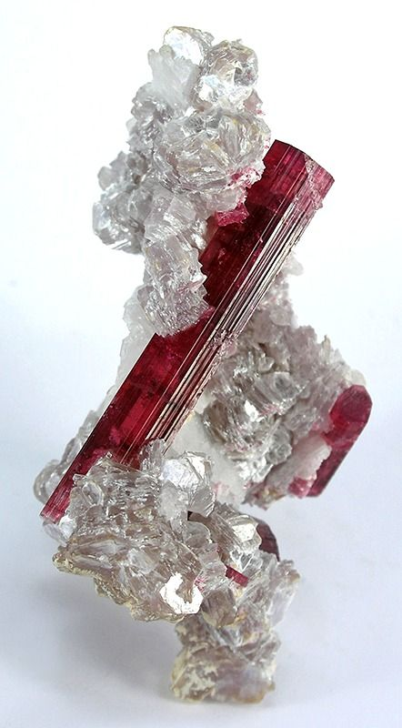 Tourmaline in Lepidolite from Brazil. We all don't grow the same way, but we all are equally incredible.