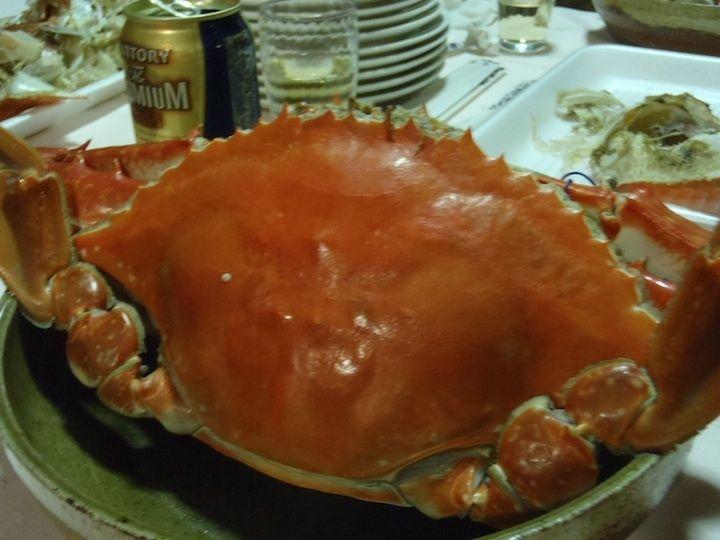 男木島のワタリガニ  Ogijima Swimming crab