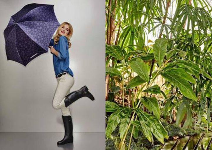 梅雨の季節のどんより気分にさよなら!雨の日を楽しむレインシューズが〈マリ・クレール〉より登場   〈エムシー マリ・クレール(mc marie claire)〉より、レインシューズの新作モデルが登場。6月上旬より順次発売を開始する。    〈マリ・クレール パリ〉のブランドコンセプトを引継ぎながら、より若いエスプリで表現し低価格を実現した〈エムシー マリ・クレール〉。今シーズンは、雨の日をもっと快適に、オシャレに過ごしたい女性の願いを叶える一足を提案。シーズントレンドを程よく取り...