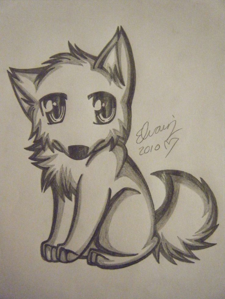 pencil drawings of anime | wolf drawing 4 by animefan1863 traditional art drawings animals 2010 ...