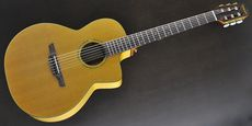 TAKAMINE / DMP640NC Acoustic Guitar Free Shipping! δ