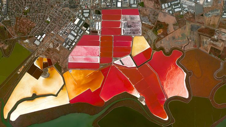 Beautiful, Troubling Photos Show Our Planet as Astronauts See It | San Francisco Bay Salt Evaporation Ponds, San Francisco, CA   Benjamin Grant/DigitalGlobe  | WIRED.com