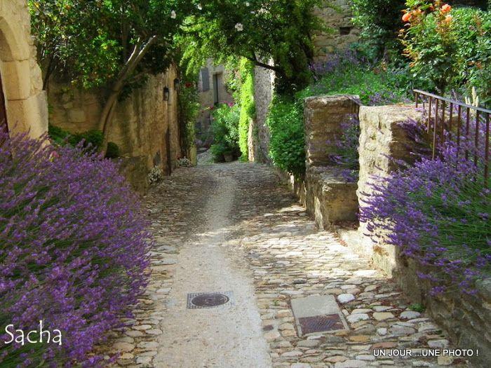 Billet complet sur Chemins et Jardins ( clic)