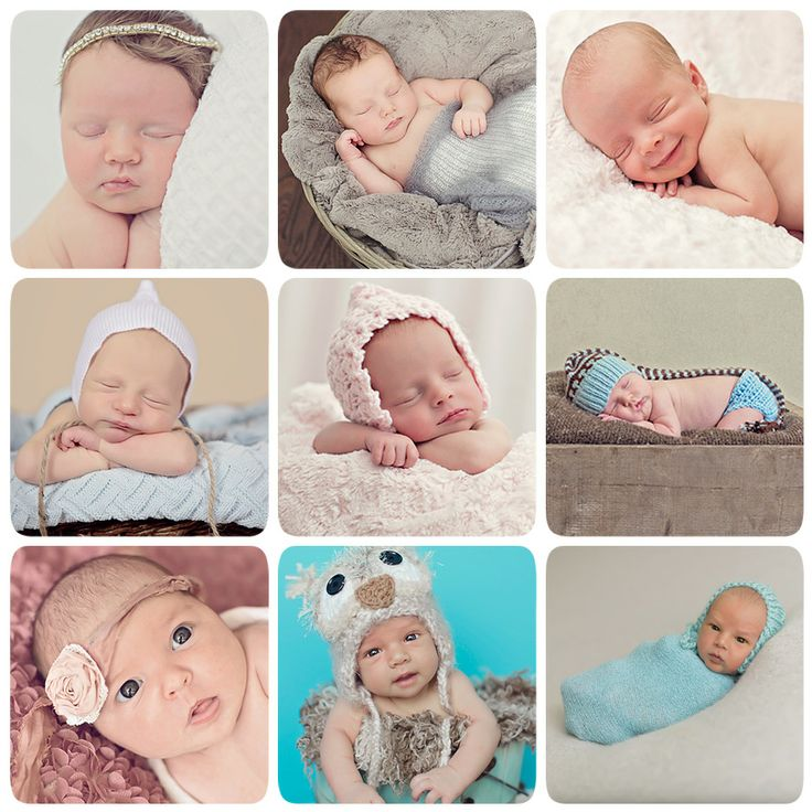 All of my 2013 newborns call to book your newborn session book early to ensure a spot for your day old newborn