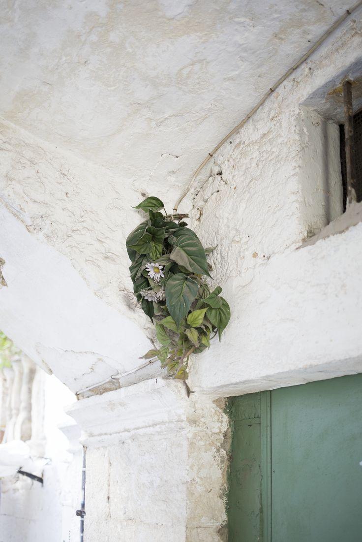 https://flic.kr/p/Jg1pFY   Iss e Tras   Palazzo Zeuli - Bari