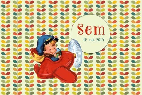 Geboortekaartje retro jongen - schattig jongetje in een vliegtuig - Pimpelpluis  https://www.facebook.com/pages/Pimpelpluis/188675421305550?ref=hl (# vintage - vliegtuig - mannetje - ventje - stoer - kleurrijk - blaadjes - origineel)