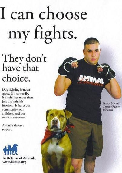 Dog fighting is sick. People involved in dog fighting and people who support it are scumbags.