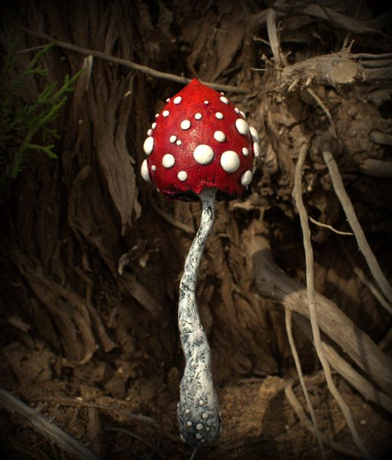 Red white amanita mushroom  ,polymer clay toadstool Home decor,Fairy Garden