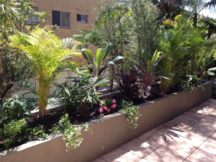 Dee Why Balcony Planter Box - Lush tropical to hide neighbours