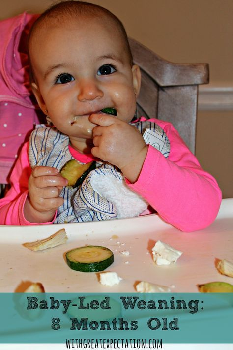 Baby Led Weaning BLW Meal And Snack Ideas For 8 Months Old