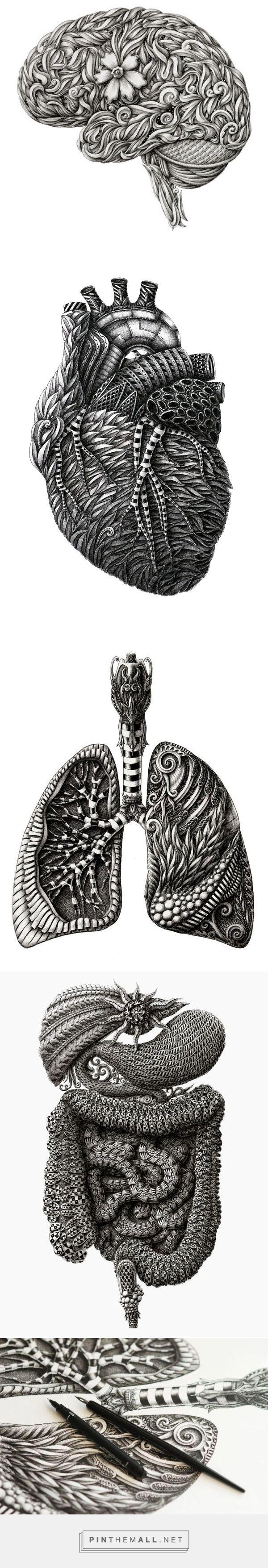 Anatomy (part 1) on Behance