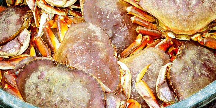 Restaurants & Menus Dungeness crab, Menu restaurant