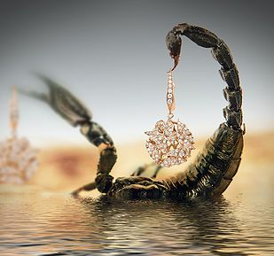 Creative surreal jewellery photography by RGB Digital Ltd, London.  #scorpion #tail #exotic