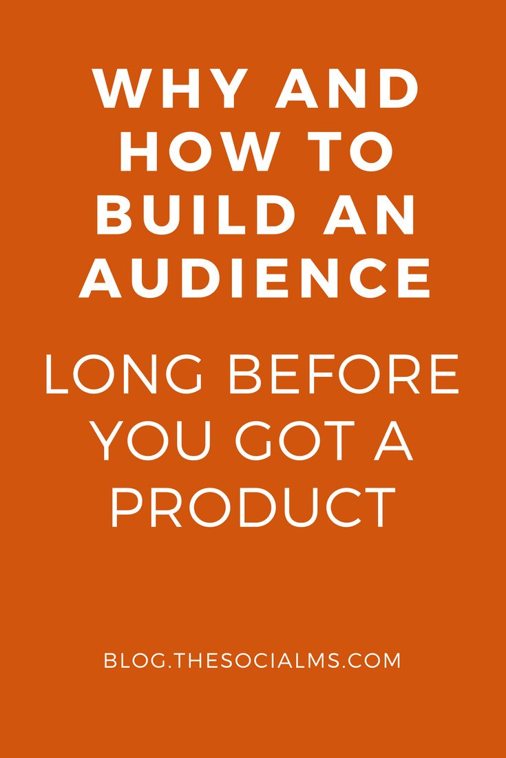 The best time to start to build an audience is when you decide to become an entrepreneur, a founder, start a company or need to market a product. blog audience, social audience, audience building, social media tips - Learn how I made it to 100K in one months with e-commerce!