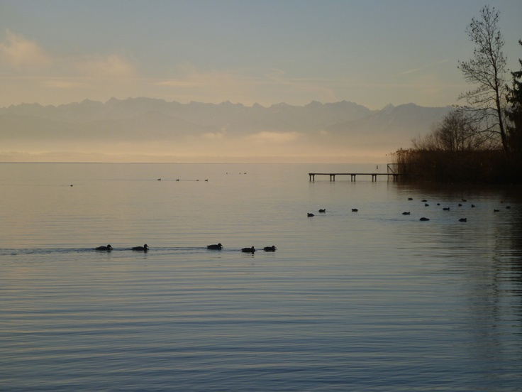 Morning atmosphere at Lake Starnberg (Germany) in the winter