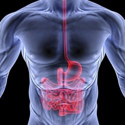 learnhow to  in performing gastrointestinaltechnique